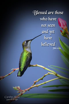 Blessed Hummingbird Photograph @ Palanca Gifts